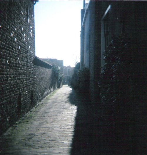 alley-cropped