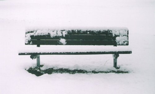 bench-cropped1